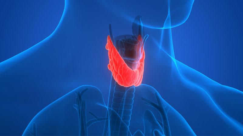 Зниження функції щитоподібної залози