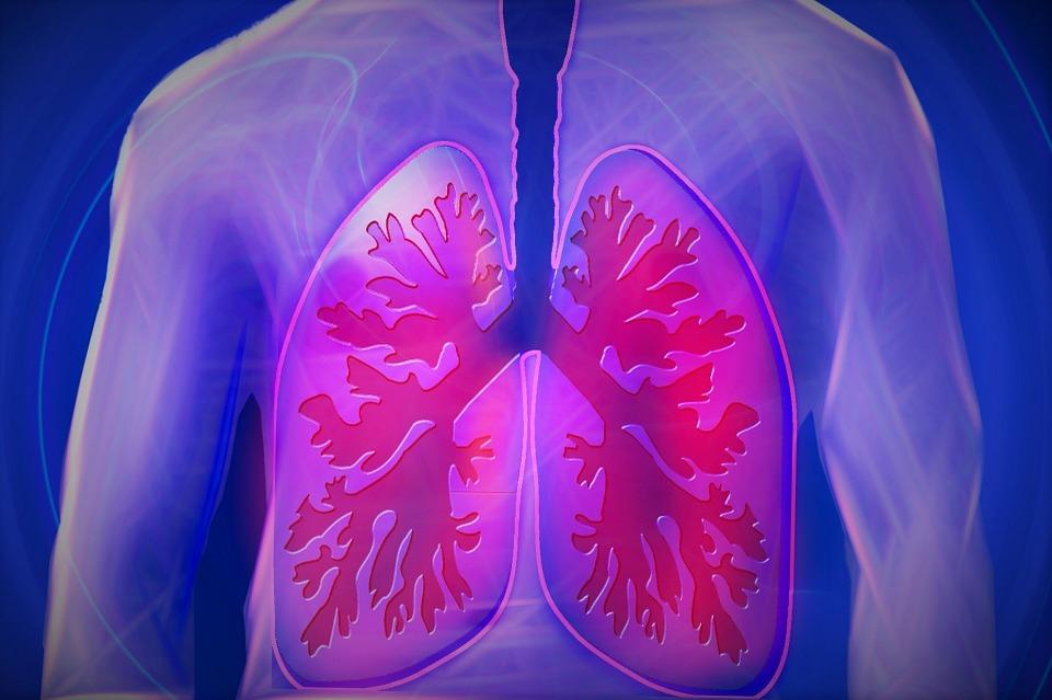 Як брудне повітря впливає на рівень захворюваності на туберкульоз